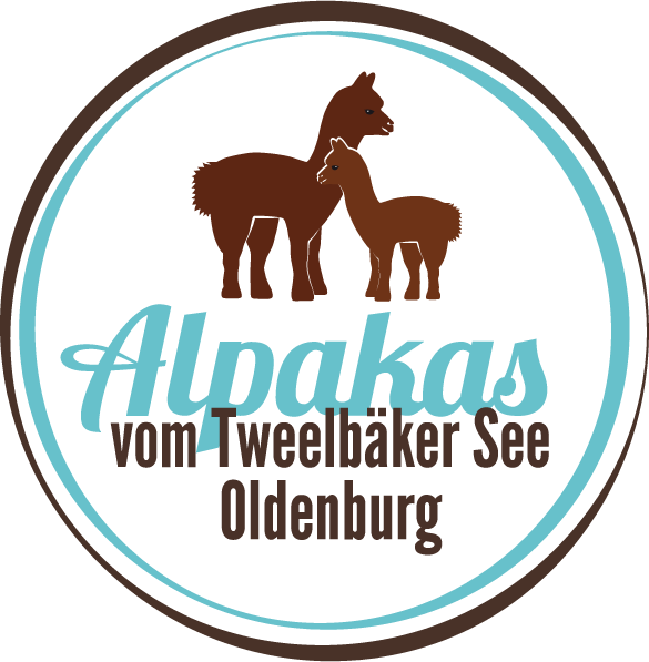 Alpakas vom Tweelbaeker See Oldenburg